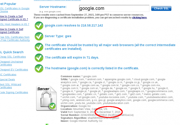 giuseppe-urso-how-to-renew-ssl-wildcard-certificate_01