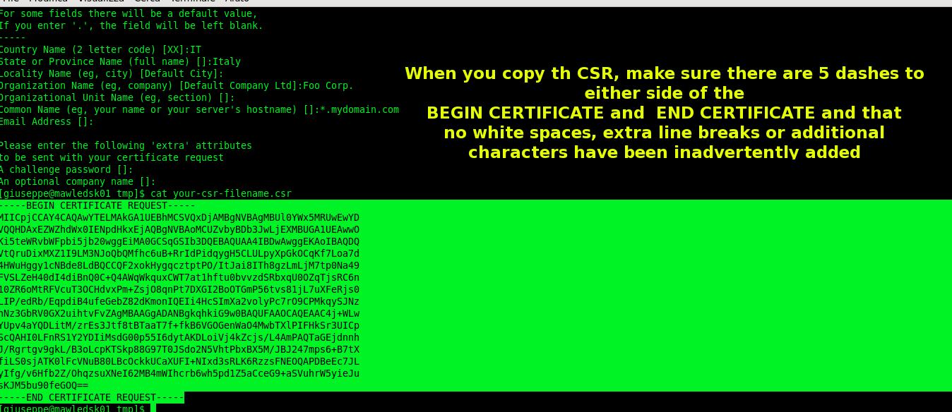 giuseppe-urso-how-to-renew-ssl-wildcard-certificate_05
