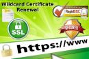 Come rinnovare un certificato SSL Wildcard con RapidSSLOnline
