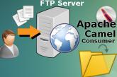 Apache Camel FTP consumer